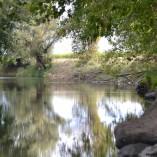 Petit ruisseau du Québec